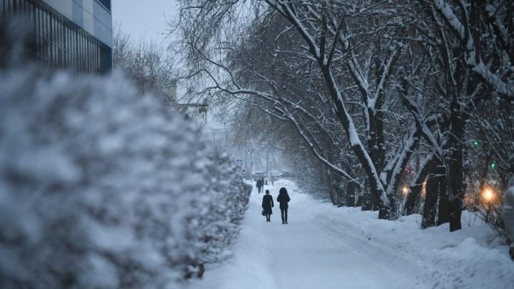 К середине января в Екатеринбурге наконец-то появились сугробы: зимний фоторепортаж