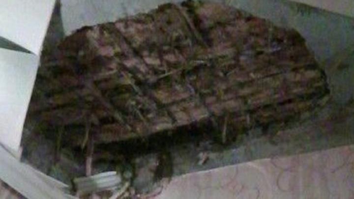 Прокуратура Екатеринбурга проверит общежитие, в котором рухнул кусок потолка и чуть не убил спящую девочку