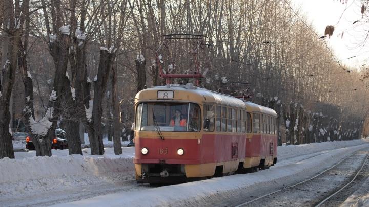 Екатеринбурженке, которая обвинила водителя трамвая в краже рюкзака её сына, выпишут штраф