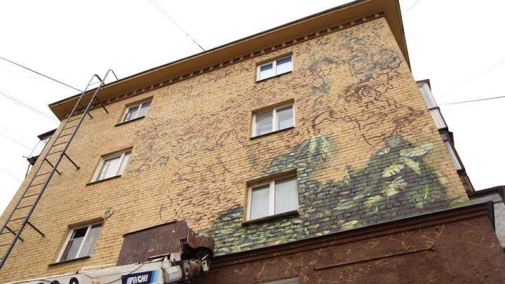 «Во власти джунглей»: в Челябинске начали расписывать фасады к саммитам-2020