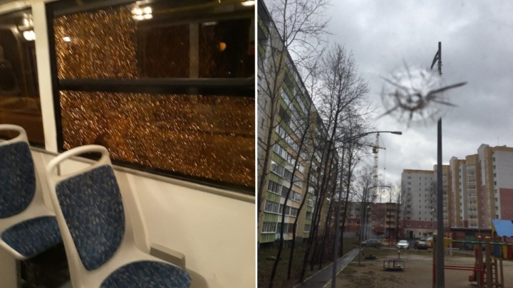 Тоболяк обстрелял автобус камнями, чтобы выиграть спор с другом. Его задержала полиция