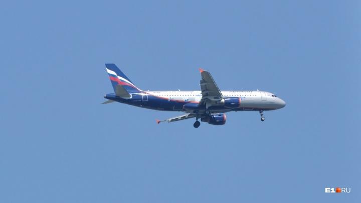 Самолет, летевший из Москвы в Пермь, вынужденно сел в Кольцово