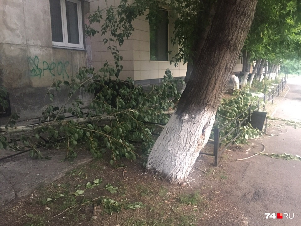 Ураганный ветер пришёл в Челябинскую область вместе с жарой