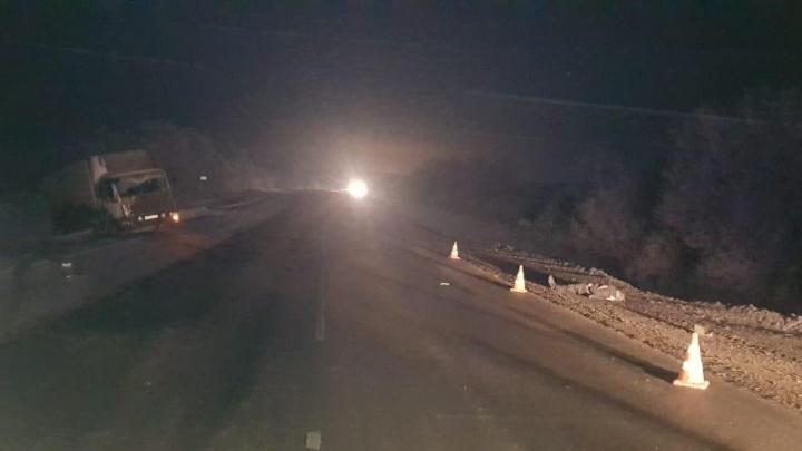 Пытался поймать машину и погиб: ночью на трассе М-5 фура сбила мужчину