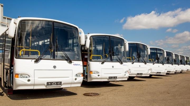 Туристические сиденья и стандарт Евро-5: «ЯрКамп» обновил парк междугородных автобусов