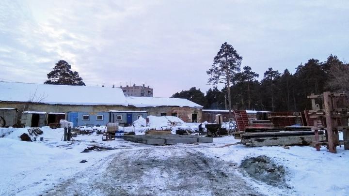 Челябинские чиновники перепроверят законность разрешения на строительство высотки возле бора