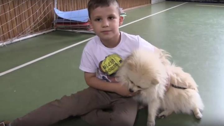 Отвязался и уехал на чужой машине: омские полицейские помогли ребёнку найти сбежавшую собаку