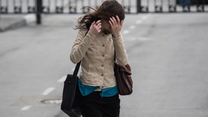 Новосибирцев предупредили о резком усилении ветра