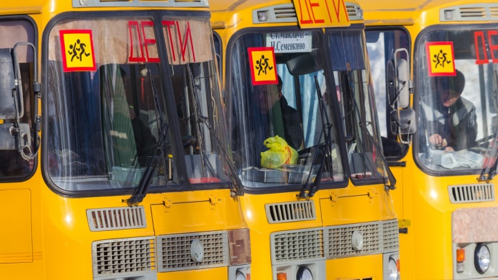 Места в классах закончились: школьников из Крутых Ключей будут возить учиться в Кошелев-Парк