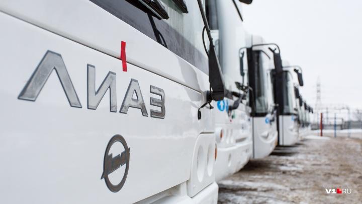 «Технические причины»: в Волгоградской области перестали продавать школьные и студенческие проездные