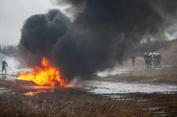 С начала года произошло 109 лесных пожаров, 44 из них на прошлой неделе