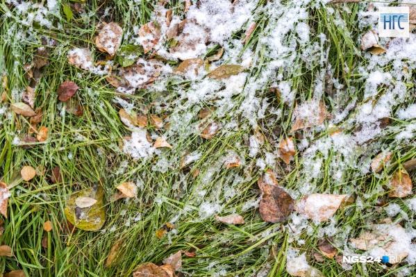 Снежной ожидается вся неделя