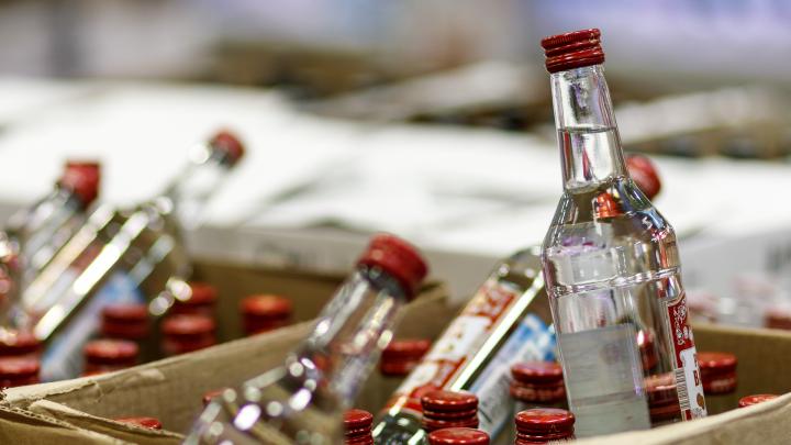 «Звонят одинокие мужчины и женщины»: в Волгограде появилась профессия партнёра по выпивке