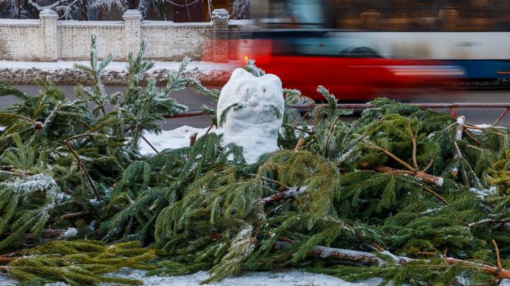 «Месяц напрягаемся, чтобы неделю лежать в оливье»: почему новогодние каникулы на самом деле не нужны