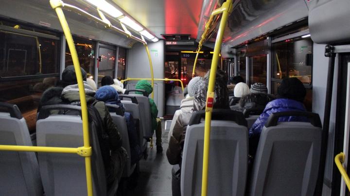 В новогоднюю ночь пять автобусов развезут омичей по домам с главной ёлки