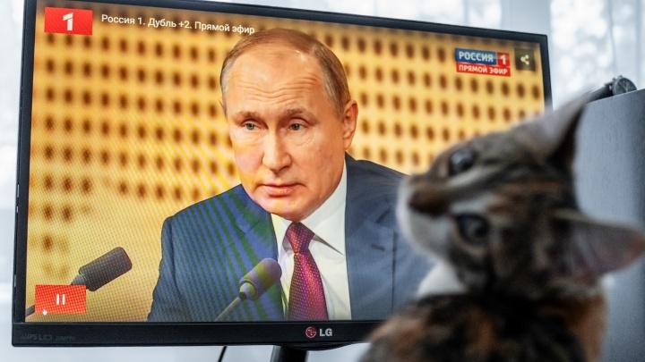 Это наш президент: как страна и котики смотрели выступление Путина