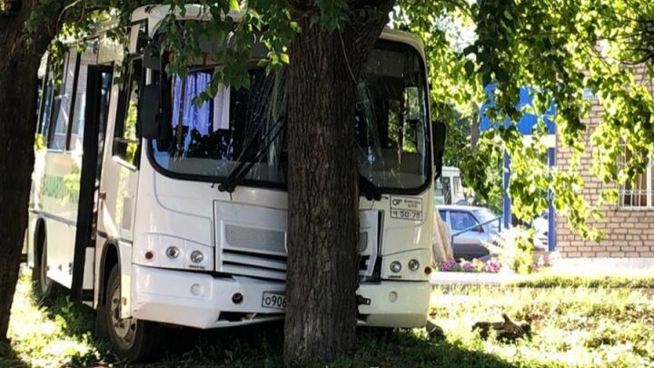 Отказали тормоза: автобус «Башавтотранса» врезался в дерево