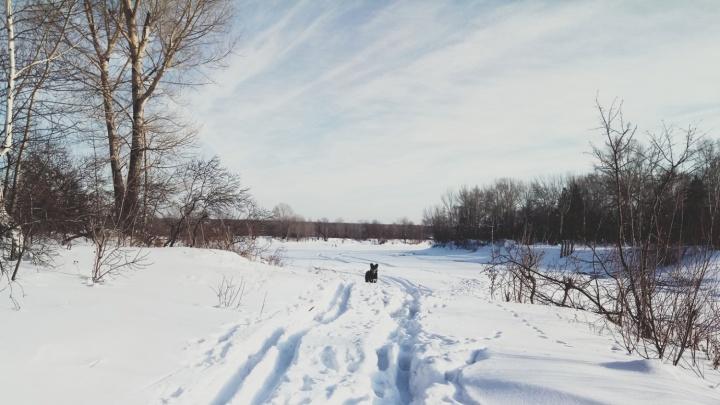 Хоккейный клуб «Сибирь» сыграет на льду озера вместе с хоккеистами-любителями