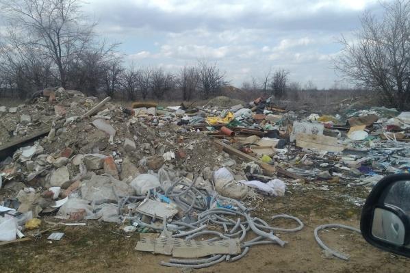 Завтра волгоградцев в любом случае в 10:00 зовут убрать мусор на мемориальном комплексе «Лысая гора»