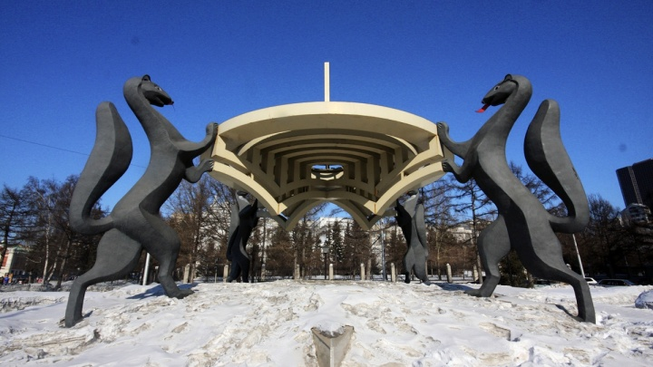 «В металлолом не сдам»: новосибирский бизнесмен предложил забрать соболей из центра города