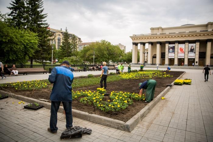 Сотрудники «Горзеленхоза» сажают цветы