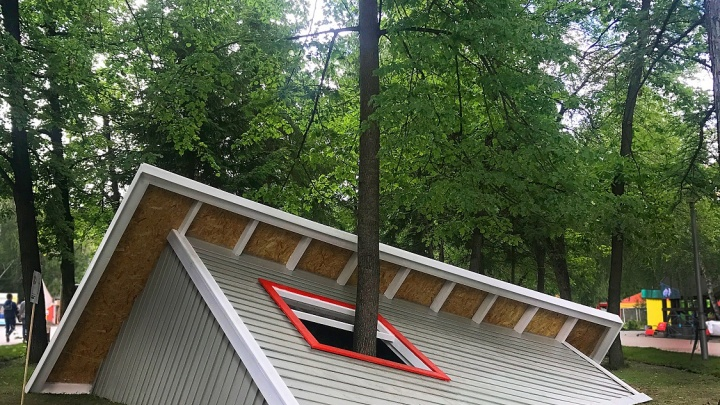 На День города целый дом ушёл под землю, а из окна выросло дерево (фото)