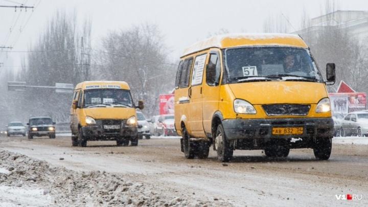 «На усмотрение перевозчиков»: в Волгограде проезд в маршрутках подорожал до 30 рублей