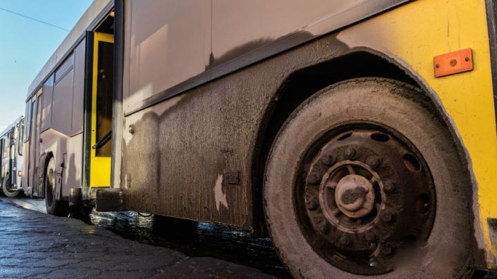 Зажало между автобусами: в Перми возле Центрального рынка погибла пассажирка трамвая