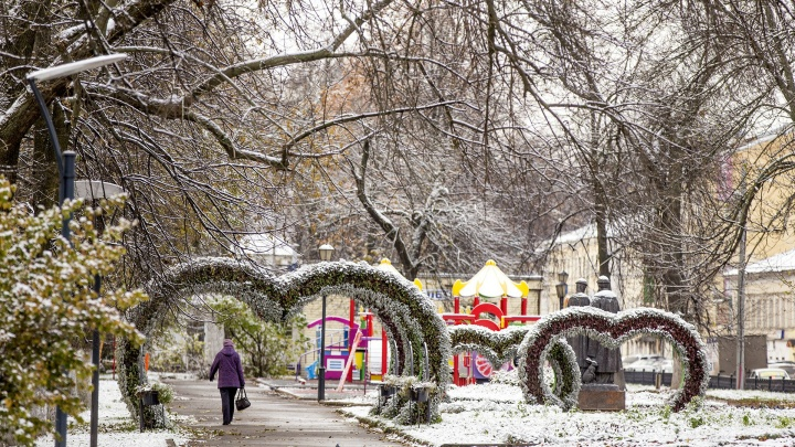 «Целый комплекс неблагоприятных явлений»: синоптики предупредили жителей центра России о снегопаде