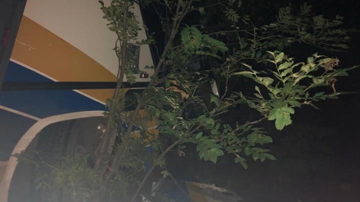 Пассажиры автобуса, попавшего в ДТП под Анапой, сегодня поедут домой в Ярославль. Но один отказался