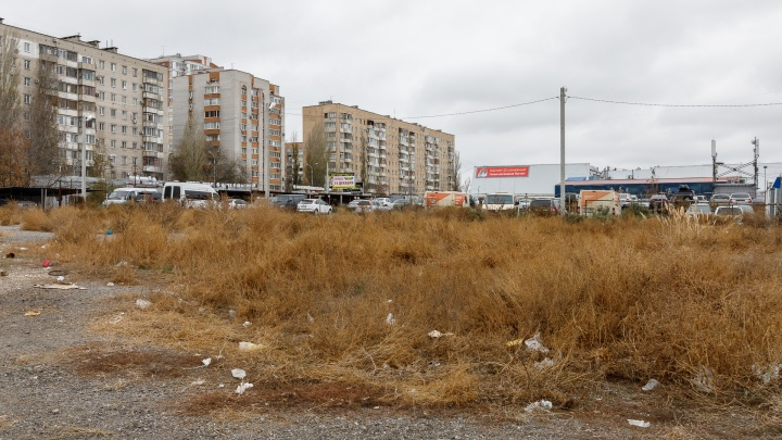 Магазины или высотка. В Волгограде землю у Ткачёвского рынка выставили на продажу