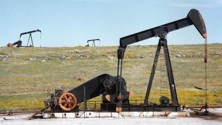 Новосибирские учёные создают симулятор добычи нефти