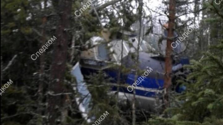 Жесткая посадка — это мягко сказано: детали приземления Ан-2 в лесу Поморья