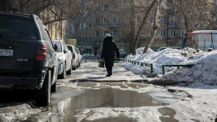 В Новосибирск придёт новая волна потепления