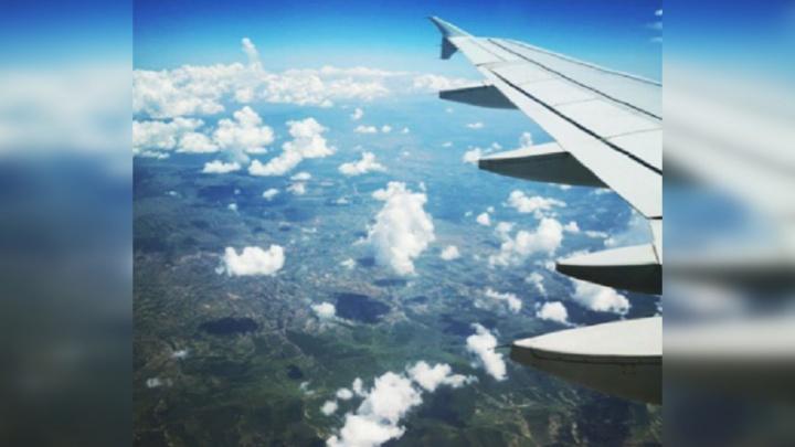 Из Ярославля запустят рейсы в Москву: сколько будут стоить билеты