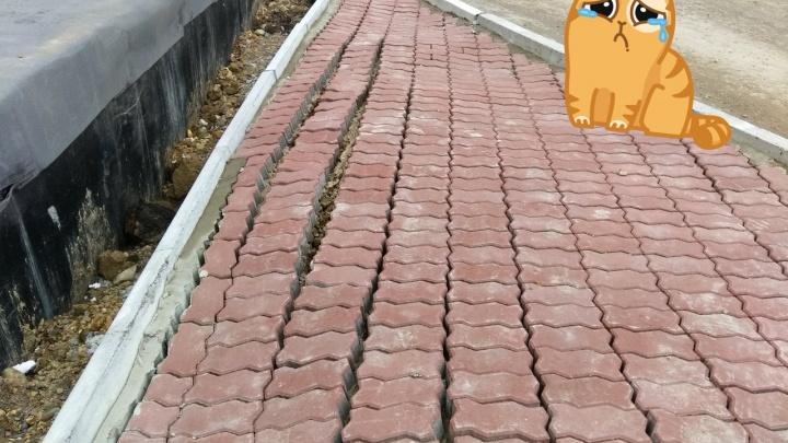 Жители новостройки в «Солнечном» высмеяли ремонт двора и украсили его картинками грустных котиков