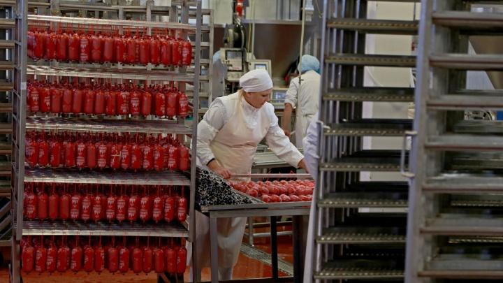 Как это делается: на мясокомбинате в Башкирии показали, попадает ли ящур в колбасу