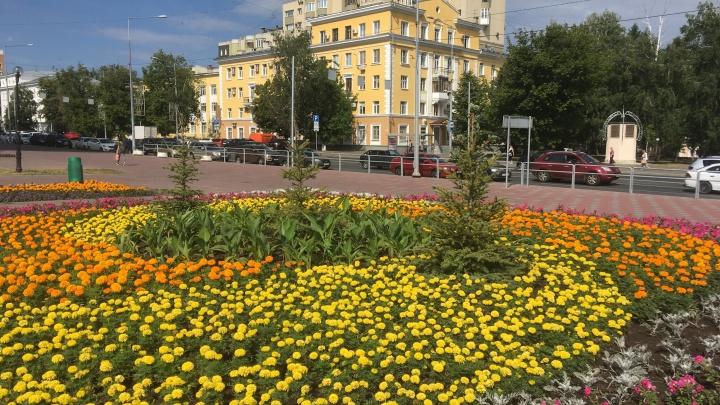 Цветет и пахнет: в Самаре высаживать растения обязали физических и юридических лиц