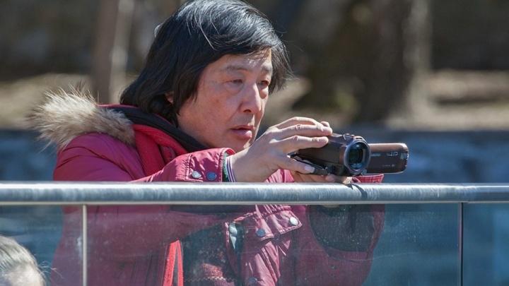 Увлеченный белыми медведями блогер из Японии приехал в красноярский зоопарк