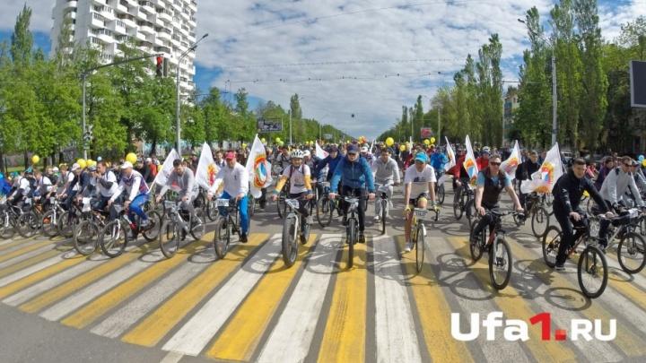 «В прогулочном  темпе»: Рустэм Хамитов присоединился ко Дню 1000 велосипедистов