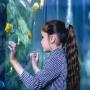 В Самаре откроют крупнейший в Поволжье океанариум