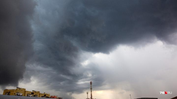 Экстренное предупреждение от МЧС: в Ярославле целые сутки будет бушевать сильный ветер