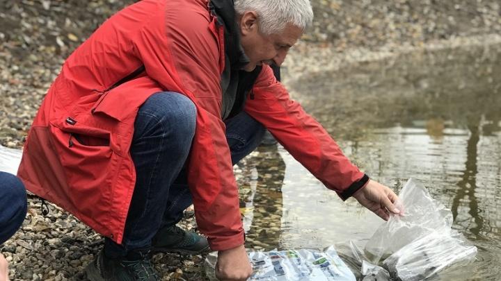 «Это недопустимо»: мэр Рыбинска запретил ловить рыбу в городском пруду