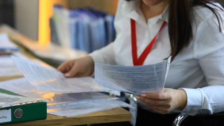 Названы топ-3 профессий, которыми интересовались красноярцы в 2019 году