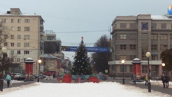 «Отлично стоит, только не там». Нижегородец раскритиковал елку на площади Горького