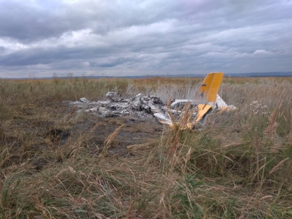 Фото и видео с места крушения самолета под Вознесенкой