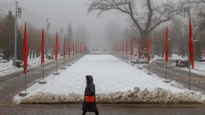 Прогулки отменять не придется: Волгоградскую область 2 февраля затянет беспросветной пеленой