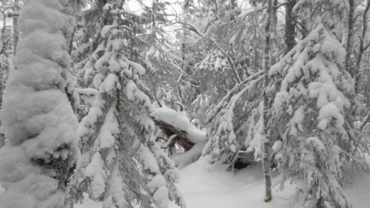 На Урале потерялись двое туристов на снегоходах