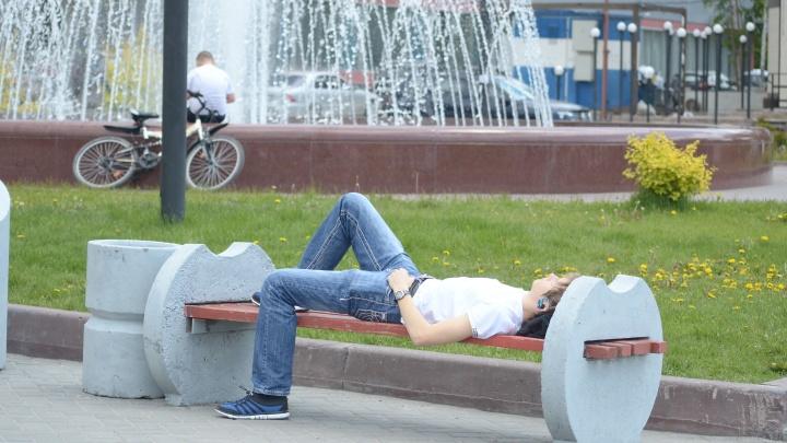К Новосибирску приближается 25-градусная жара