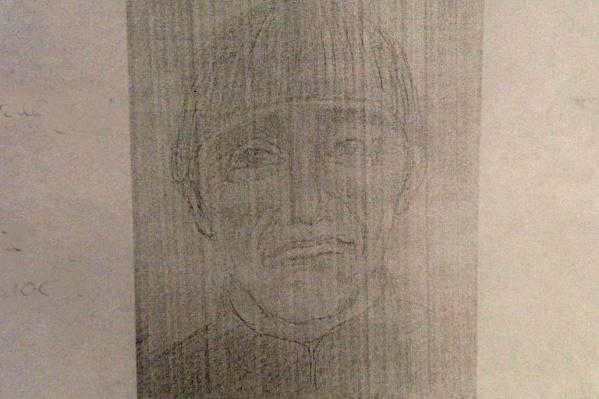 Волонтёры опубликовали портрет разыскиваемого